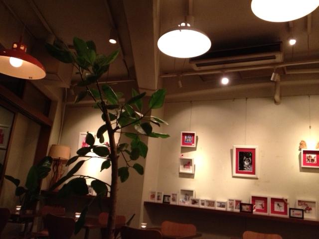 201211cafe4.JPG